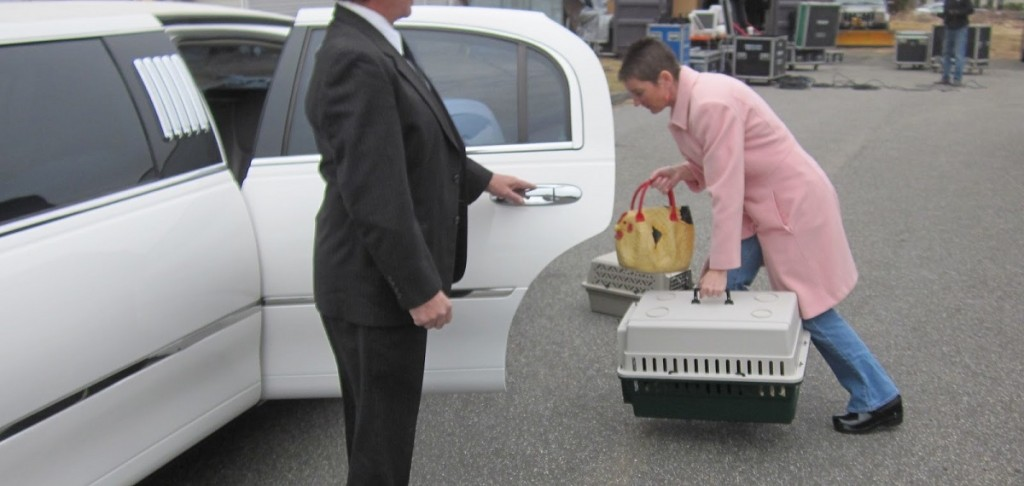 limousine in long island NY